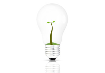 Umwelt lampe