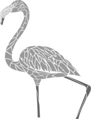 Flamingo3 vector
