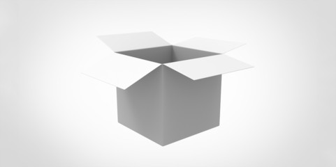 white 3D Blank opened  box