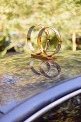 Golden Rings on Car Roof