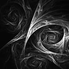 Black And White With Vignette Fractal Flower