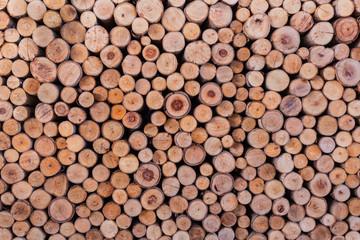 Aluminium Prints wood log texture background