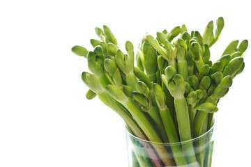 Green vegetable herb fresh on white background
