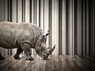 Foto op Aluminium Neushoorn rhino in the house