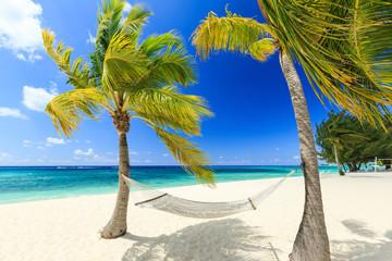 Hammock and palm trees at 7 mile beach, Grand Cayman Wall mural