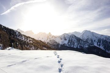 Wall Mural - Paesaggio di montagna in inverno con neve