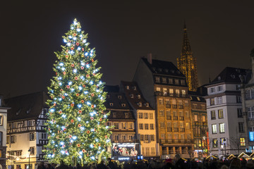 Superb Christmas tree in Strasbourg, France