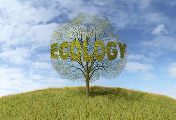 ecology text on a tree