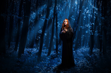 Wall Mural - Witch at night forest