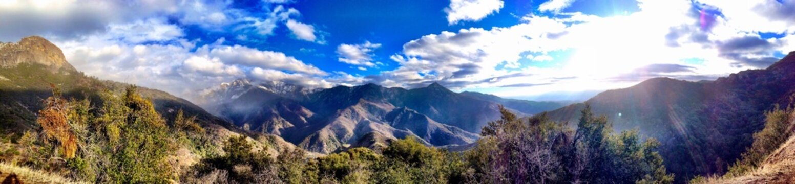 Wide view panorama from the sequoia national forest park