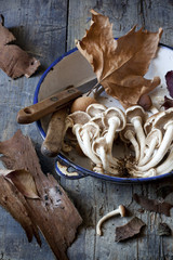 fresh mushrooms on vintage plate on rustic table