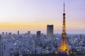 Staande foto Tokyo Tokyo Tower, Japan