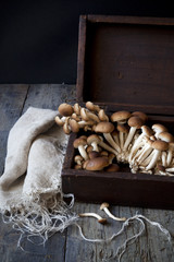 fresh mushrooms on vintage wooden box on rustic table