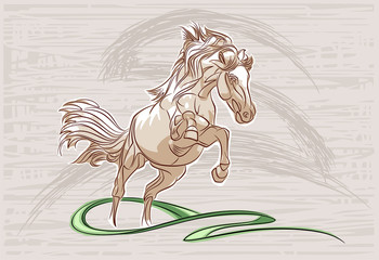 horse_07