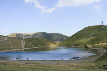 Cavalli in libertà bevono al Lago Scaffaiolo: Vacanza relax tra Toscana e Bologna lago di montagna con rifugio.