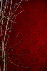 Branch of a tree on a red background with a pattern. Background