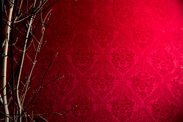 Branch of a tree on a red background with a pattern