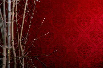 Branch of a tree on a red background with a pattern.