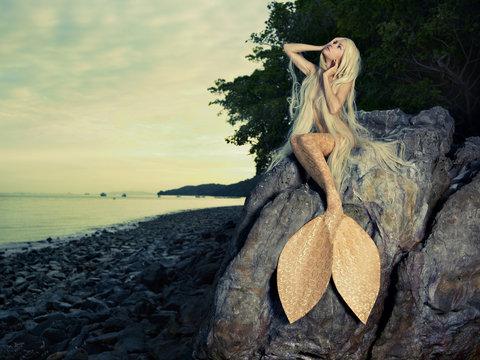 Beautiful mermaid sitting on rock
