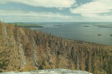 Fototapete - Vintage view from the Koli to lake Pielinen