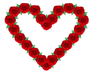 heart of roses on a white background