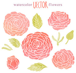 Watercolor flowers in vector
