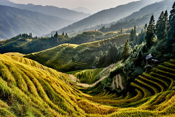 Photo sur cadre textile Chine rice terraced fields Wengjia longji Longsheng Hunan China