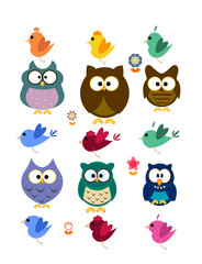 Collection of owl and bird