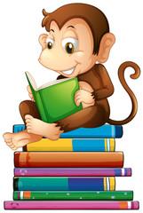 Monkey and books