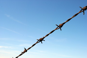 barbed wire with blue sky on background