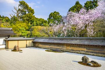 Kyoto, Japan at Ryoan-ji Temple in Spring Wall mural