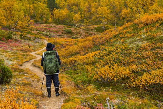 Autumnal hiker