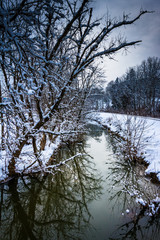 Snow covered trees reflecting in a creek in rural Carroll County