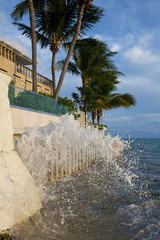 Key West Manstion