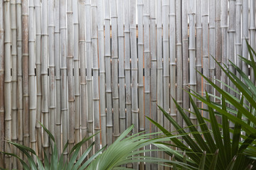 Bambuswand mit Palmblätter