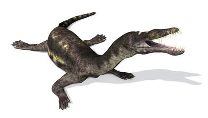 Nothosaurus:  Prehistoric Marine Reptile