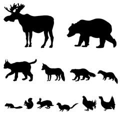 Animals living in taiga. Vector set of silhouette