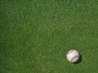 Baseball on Sports Turf Grass