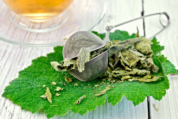 Sage dried in strainer on fresh leaf