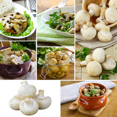 collage menu different dishes from mushrooms champignons