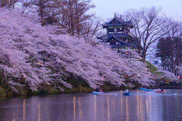 Cherry blossoms at the Takada Park and the Takada Castle in Joet