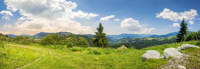 boulders on hillside meadow in mountain