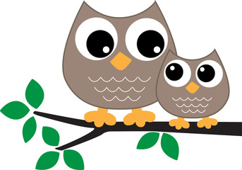 two sweet brown owls