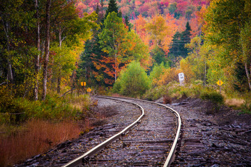 Spoed Fotobehang Spoorlijn Autumn color along a railroad track in White Mountain National F