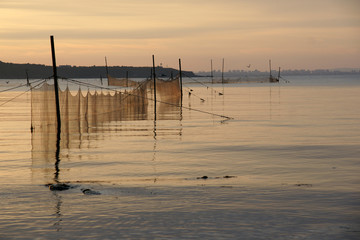 fishing nets - 9