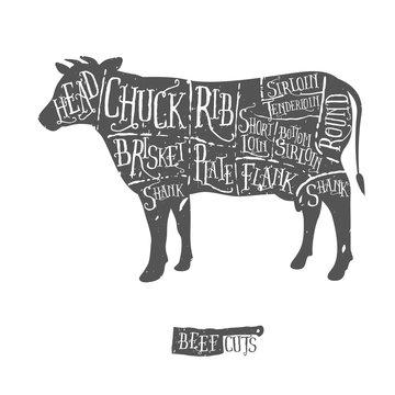 Vintage hand drawn butcher cuts of beef scheme
