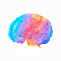 Brain genius