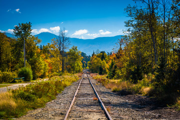 Railroad track and distant mountains seen in White Mountain Nati