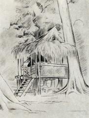 Mikluho-Maklai's hut at Garagassi Point,  New Guinea