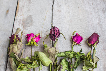 Dried roses on a wooden